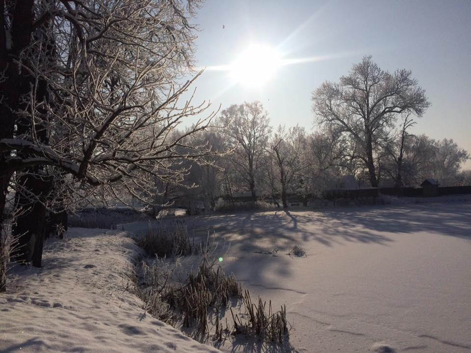 Зима, яркий день1