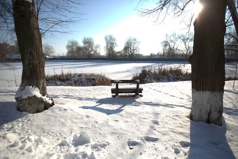 Зима, яркий день