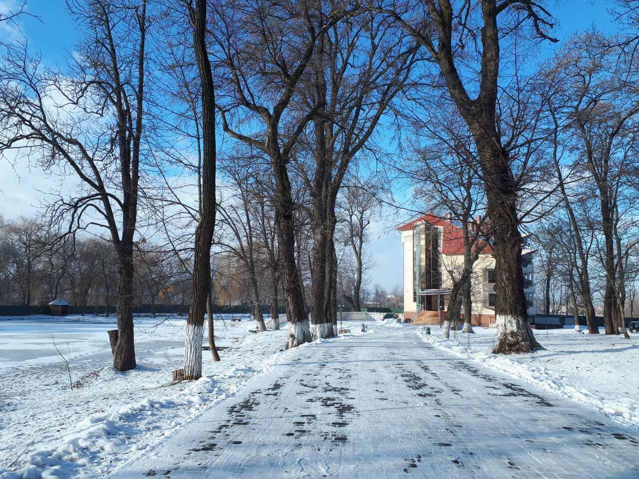 Зима, яркий день2